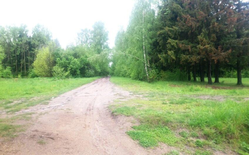 Участок 10 соток в уютном СНТ «Гранит», рядом д. Нововасильевское.
